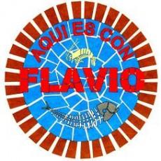 logo-flavio.jpg
