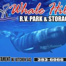 Whale-Hill-Storage.jpg