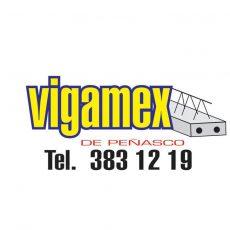 Vigamex-de-peñasco.jpg